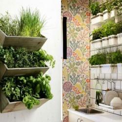 Cómo tener un pequeño jardín dentro de tu casa
